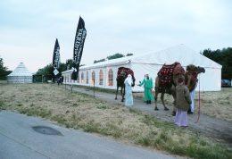 Zelte mieten Niederösterreich